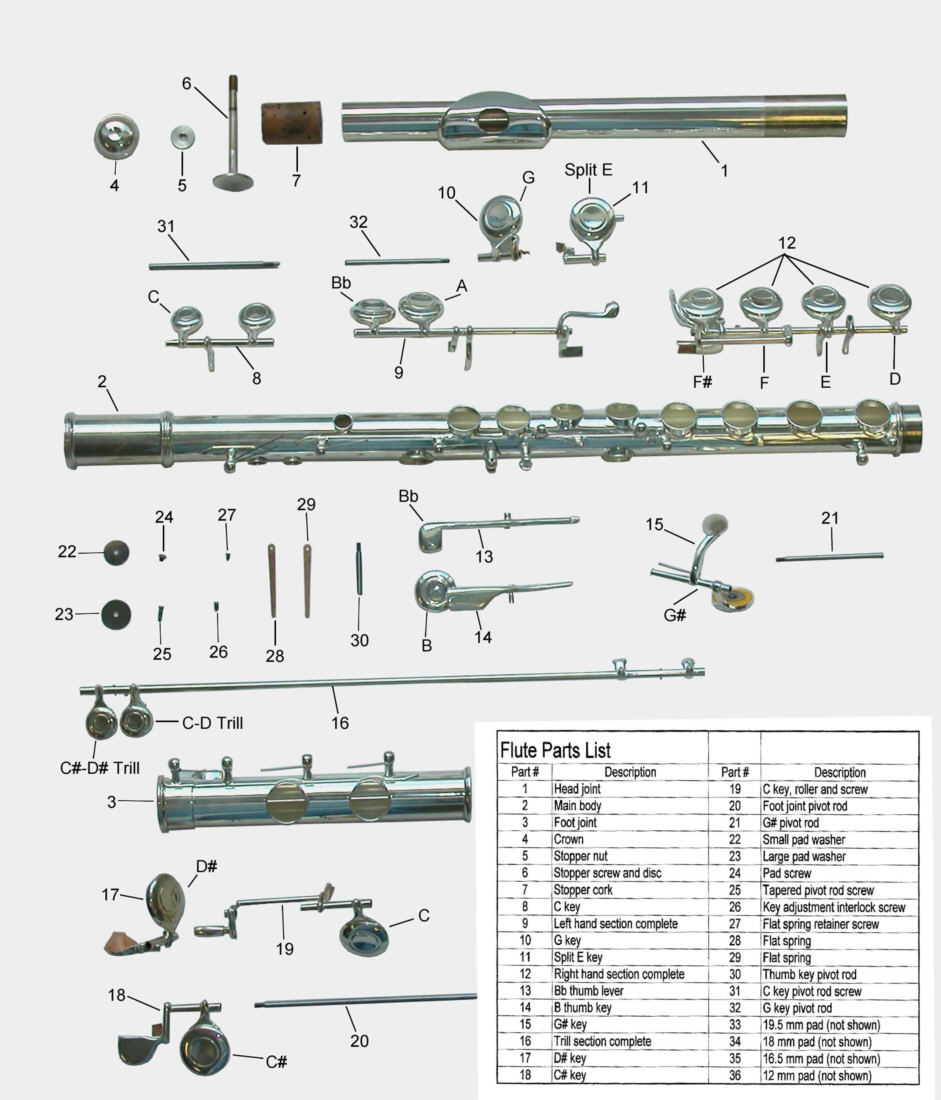 The gallery for --> Parts Of A Flute Diagram