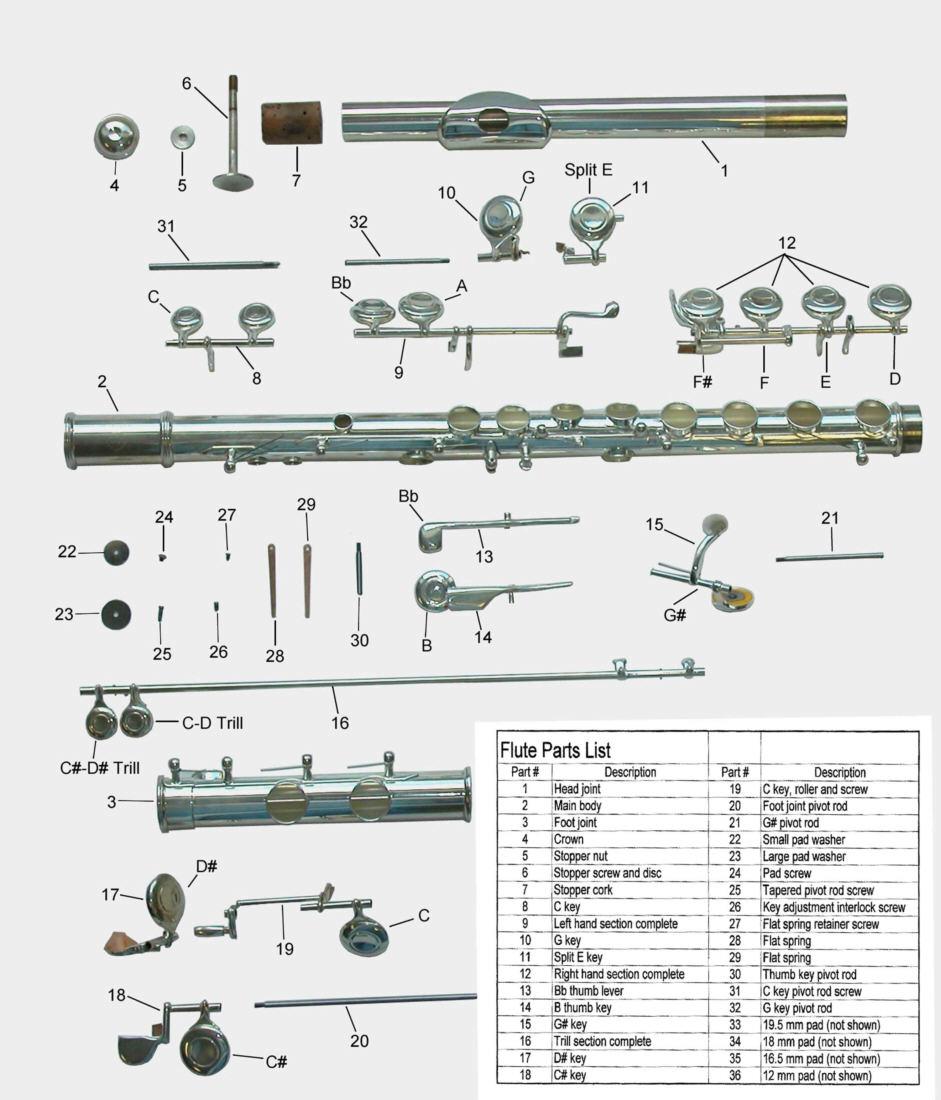 flute springs diagram auto electrical wiring diagram u2022 rh 6weeks co uk